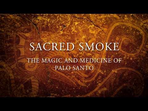 Sacred Smoke: The Magic Medicine of Palo Santo