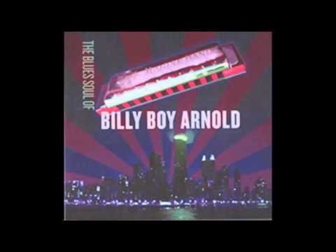 Ain't That Just Like a Woman- Billy Boy Arnold - Brad Hallen on Bass