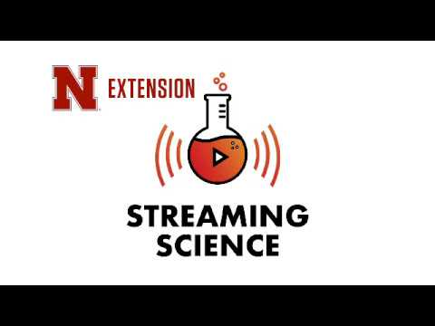 Streaming Science Electronic Field Trip: Sun Rays and Windy Days