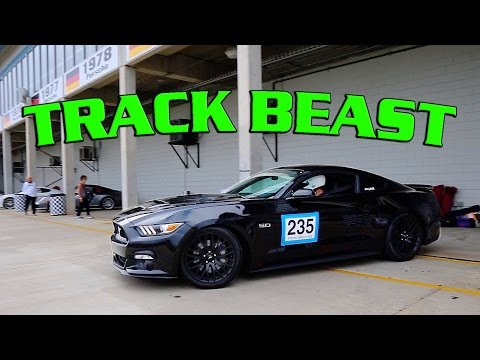 TRACK DAY! Scott's FBO 5.0 GT Conquers Sebring!