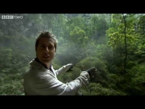 How to Grow a Planet - Episode 2 - BBC Two - Son Doong Cave