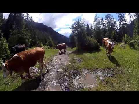Trans Alp  Füssen - Riva de Garda 06.2016