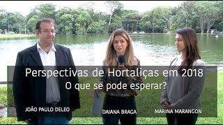 HF em Vídeo: Oferta das hortaliças será menor em 2018 (Parte III)