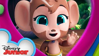 Marty the Monkey 🐵| Calling All T.O.T.S. | T.O.T.S. | Disney Junior