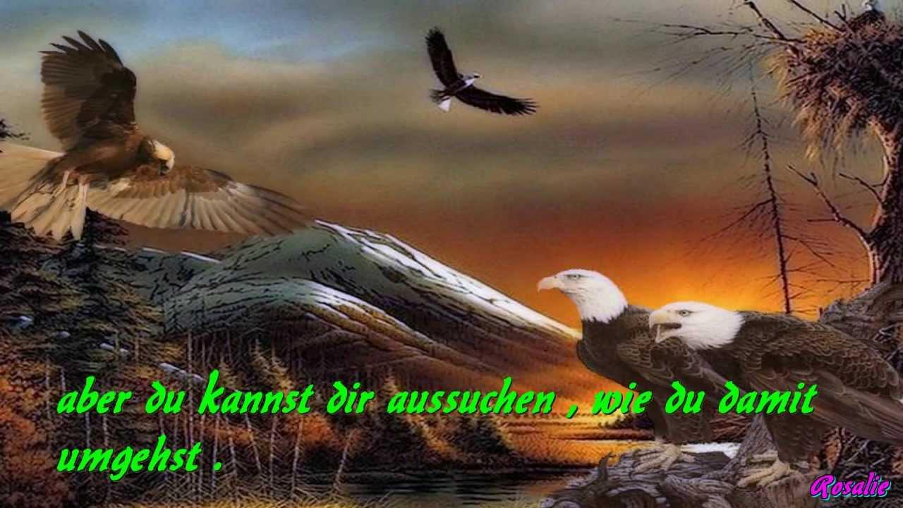 Im Reich Des Goldenen Condor