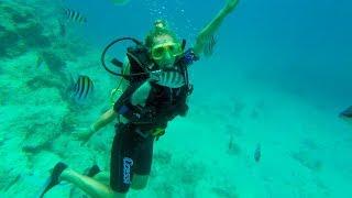 Экскурсия Дайвинг в Хургаде На дне Красного моря Хургада Египет Отдых в Египте 2018