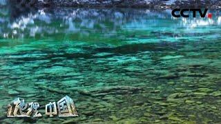 《地理·中国》 九寨沟有多美 风景秀丽的海子宛若瑶池 20200728 | CCTV科教 - YouTube