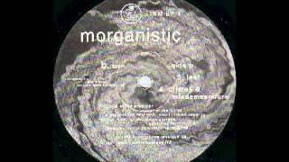 MORGANISTIC - Leaf   ( Fluids Amniotic [ Input Neuron Musique ] )