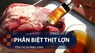 Phân biệt thịt lợn tồn dư kháng sinh | VTC1