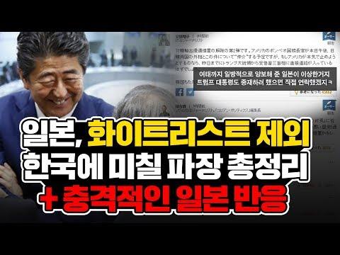 일본, 결국 화이트리스트 제외! 한국에 미칠 파장 총정리 + 충격적인 일본 반응 l Japan decided to exclude S.Korea from its whitelist