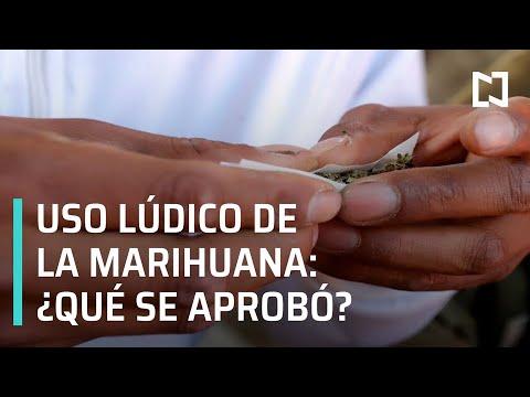 ¿Qué aprobó la SCJN sobre el uso lúdico de la marihuana? - Despierta