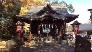 江古田氷川神社---東京都中野区