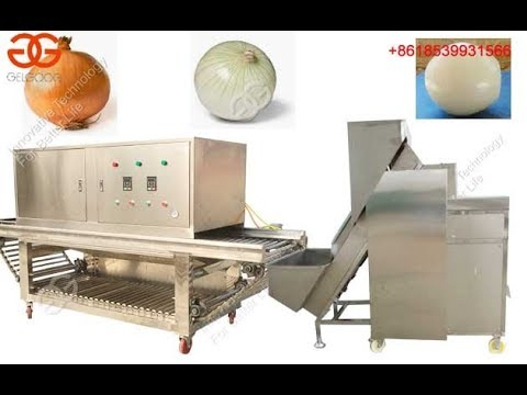 Onion Processing Equipment Onion Peeling And Root Cutting Machine