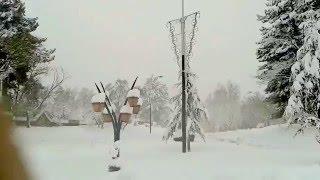 Ifrane, neige tombante