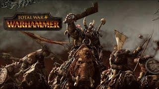 Total War Warhammer на слабом пк
