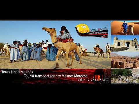 Tourist transport agency Meknes Morocco