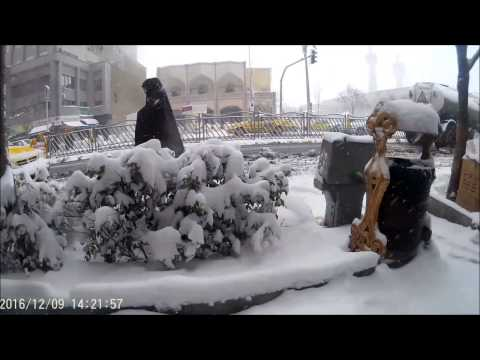 Winter Sonata In Mashhad