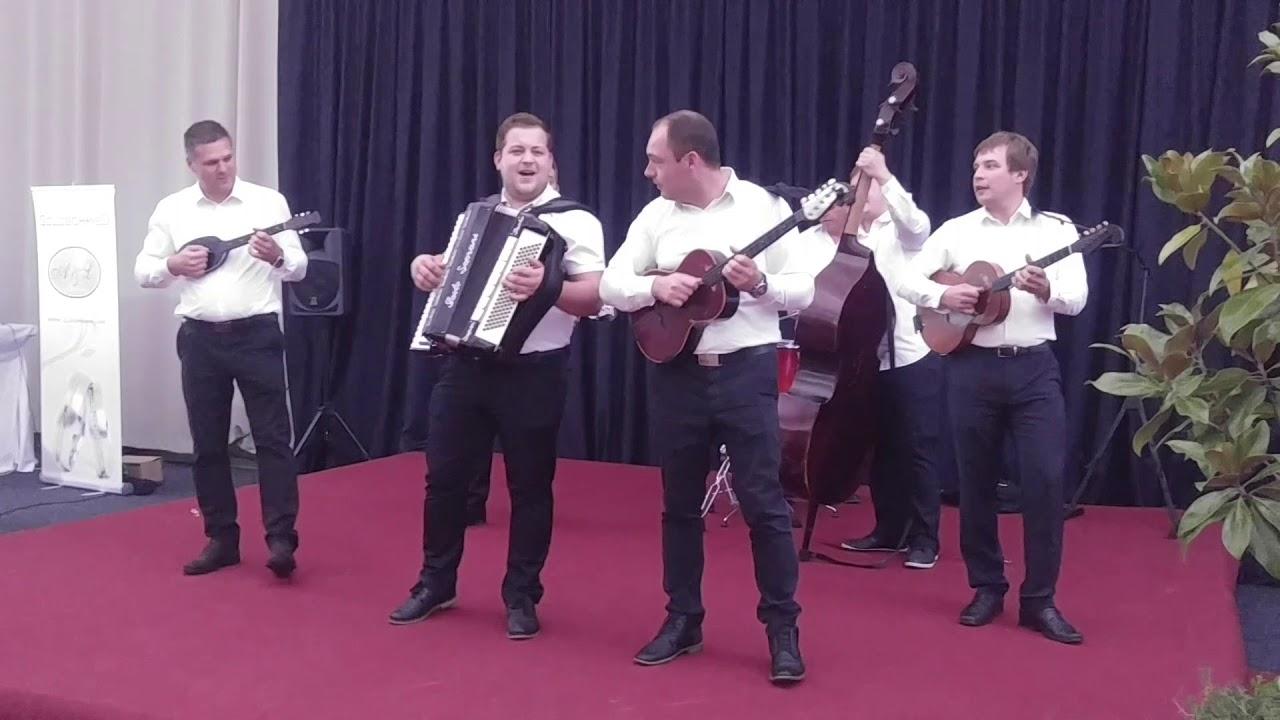 TS Taubeki - Skopje Beograd acoustic version - YouTube