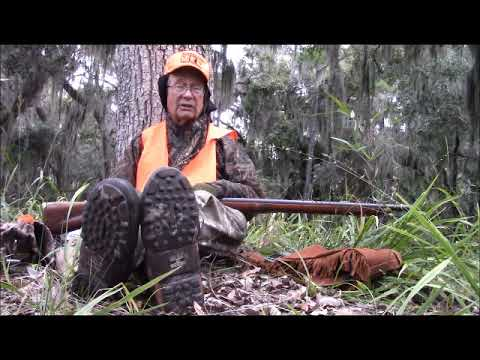 Using Alligator  Recommended Hunt Site On Georgia's Ossabaw Island