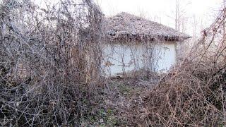 Развитие сельских территорий. Как возродить заброшенные деревни