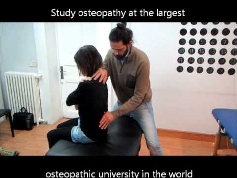 Doctor of Osteopathy Students Practicing Osteopathy in Madrid Campus of NUMSS