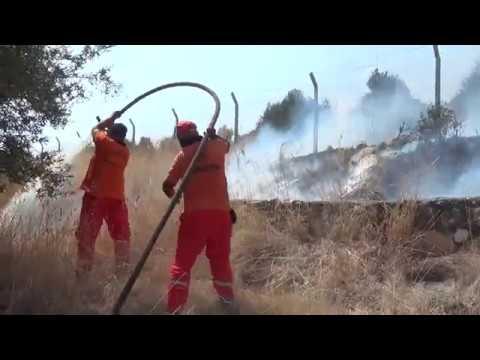 Limonlu'da Korkutan Yangın