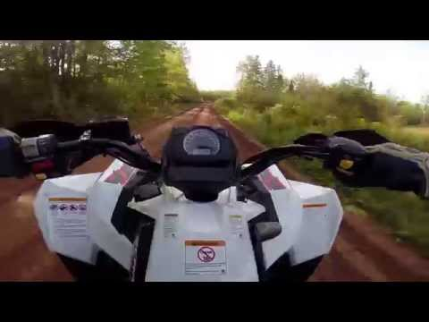 Scrambler xp 1000 top speed / wheelies