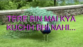Meri Duniya Hai Tujhme Kahi karaoke with lyrics