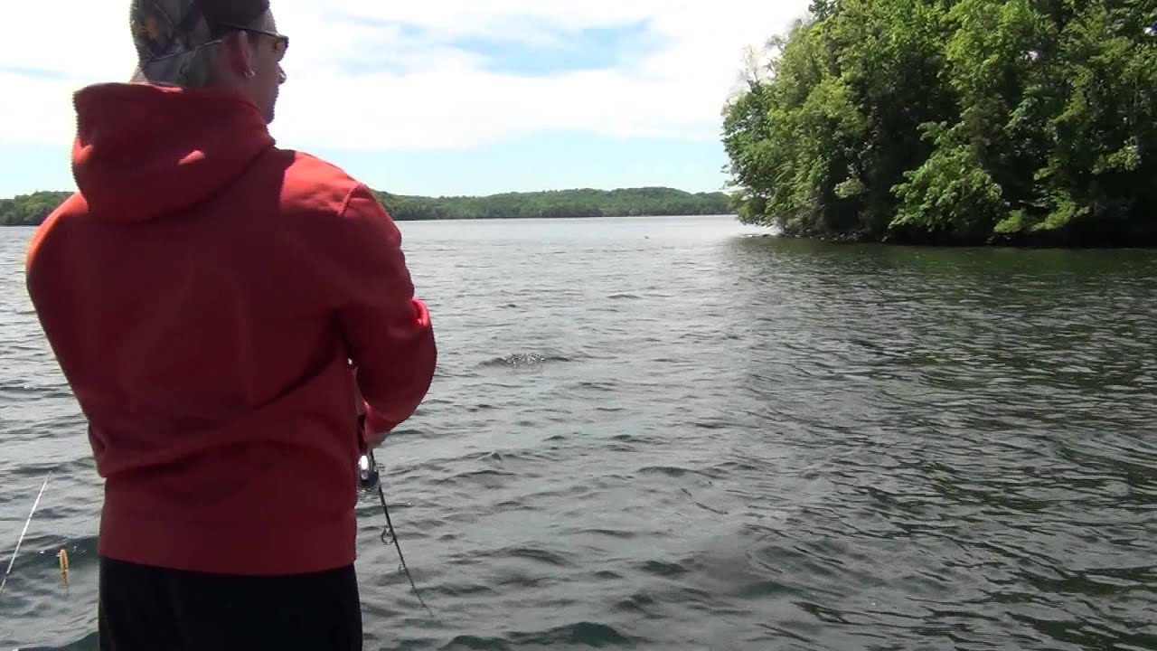 Team Backstrap Outdoors 1000 Islands Smallmouth Fishing 2