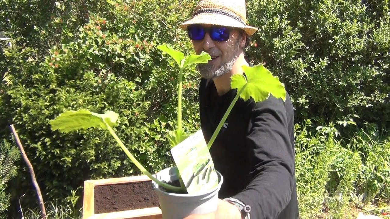 Gardening with Doc - Making a Raised Planting Bed