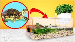 Simple and Cheap Red Eared Turtle Terrarium Tank DIY