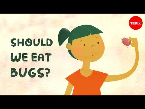 Video image: Should we eat bugs? - Emma Bryce