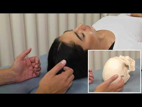 Osteopathic Cranial Manipulative Medicine: Frontal and Parietal Lift Techniques