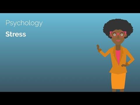 Stress - Psychology A-level Revision Video - Study Rocket