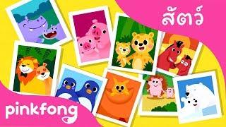 ครอบครัวสัตว์ | เพลงสัตว์ | พิ้งฟอง(Pinkfong) เพลงและนิทาน