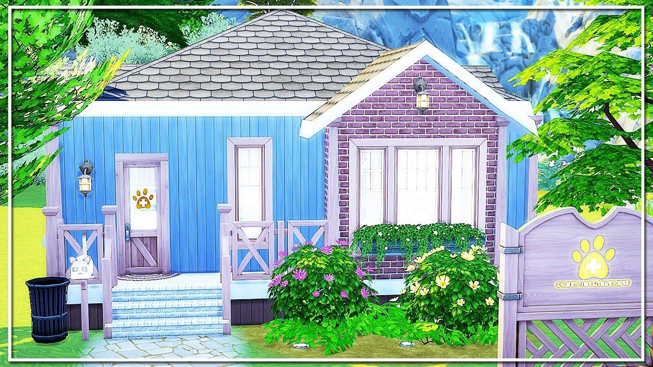 Building A Vet Clinic Sims