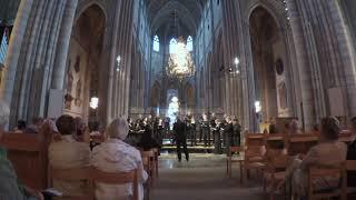 Salvator Mundi (Thomas Tallis) -- Duke Vespers Ensemble