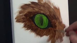 How to paint realistic Cats Eyes,#1