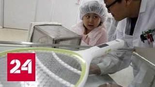 Испанцы изобрели рубашки от комаров и клещей(, 2016-08-02T12:52:16.000Z)