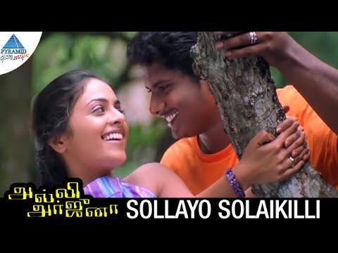 Alli Arjuna Tamil Movie Songs | Sollayo Solaikili Video Song | Manoj | Richa Pallod | AR Rahman