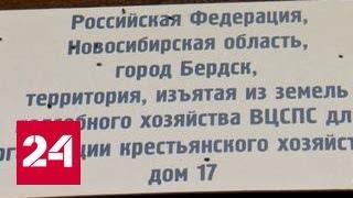 Ютуб новости сегодня бердск