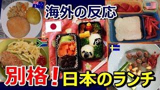【海外の反応】「日本の弁当だけ別格じゃん!」世界の子供たちのランチ...
