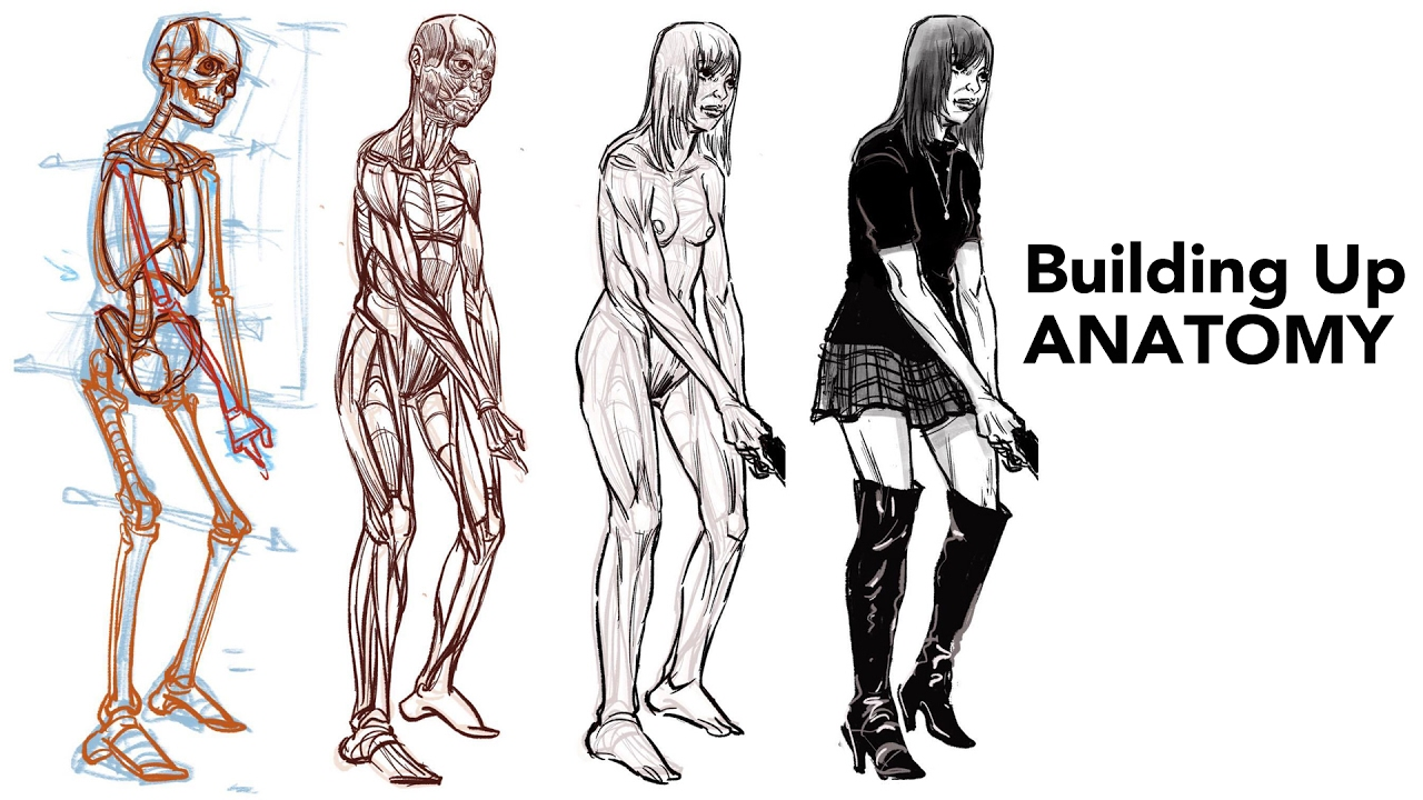Figure Drawing - Building Up Simple Anatomy - YouTube