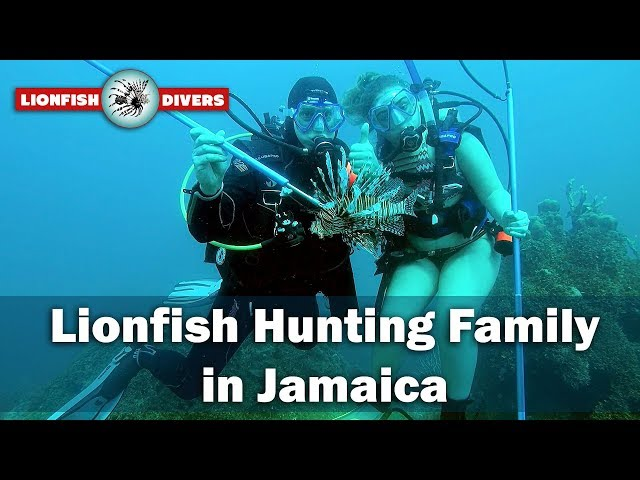 Lionfish Hunting Family Saving the Reefs in Jamaica