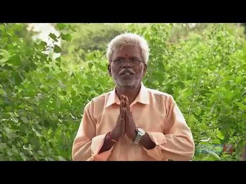 Thazhuthaalai - Plant @ your herbal garden | Poovali | News7 Tamil