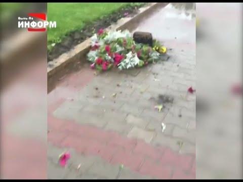 Кому помешали цветы и растения?