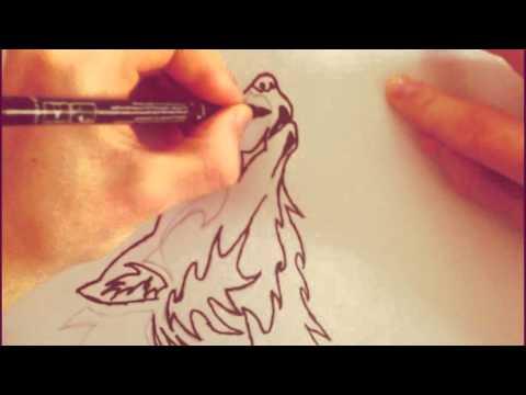 Как нарисовать красивого волка  Рисованные картинки карандашом волки