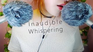 ASMR Soft Inaudible Whispering 🐑 & Windscreen Cutting