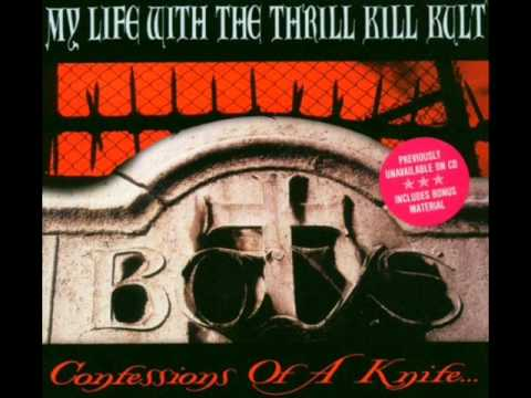 My Life With the Thrill Kill Kult - The Days of Swine and Roses