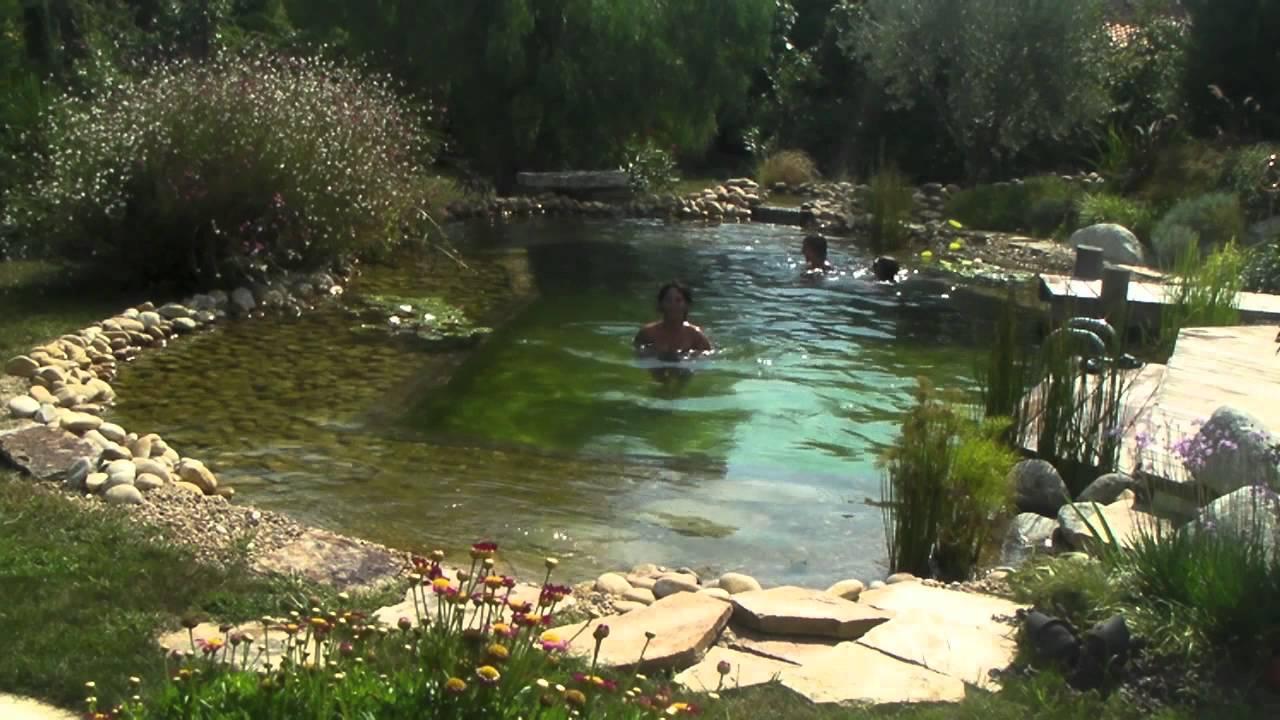 Bassin De Baignade Autoconstruction la piscine écologique : une alternative responsable   ecomalin